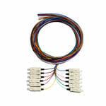 LCPT-OM1-02-12 – Serveredge LC Pigtail OM1-2M-12 Fibres (12 Colour)